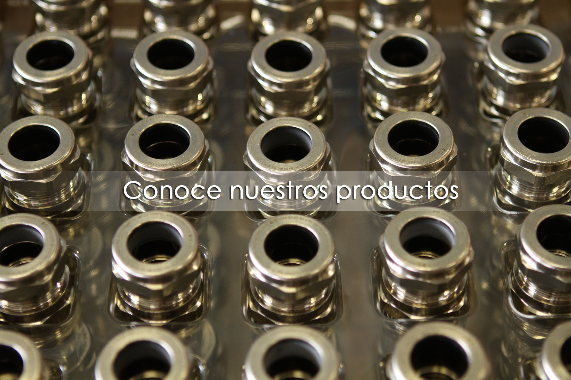 Productos Comaple